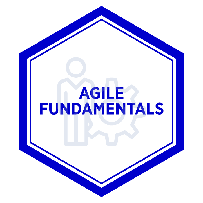 AIM Agile Fundamentals Badge